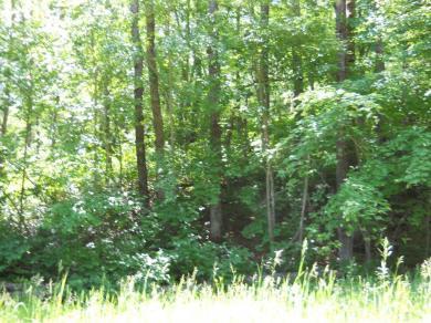 XXX Raccoon Lane, Breezy Point, MN 56472