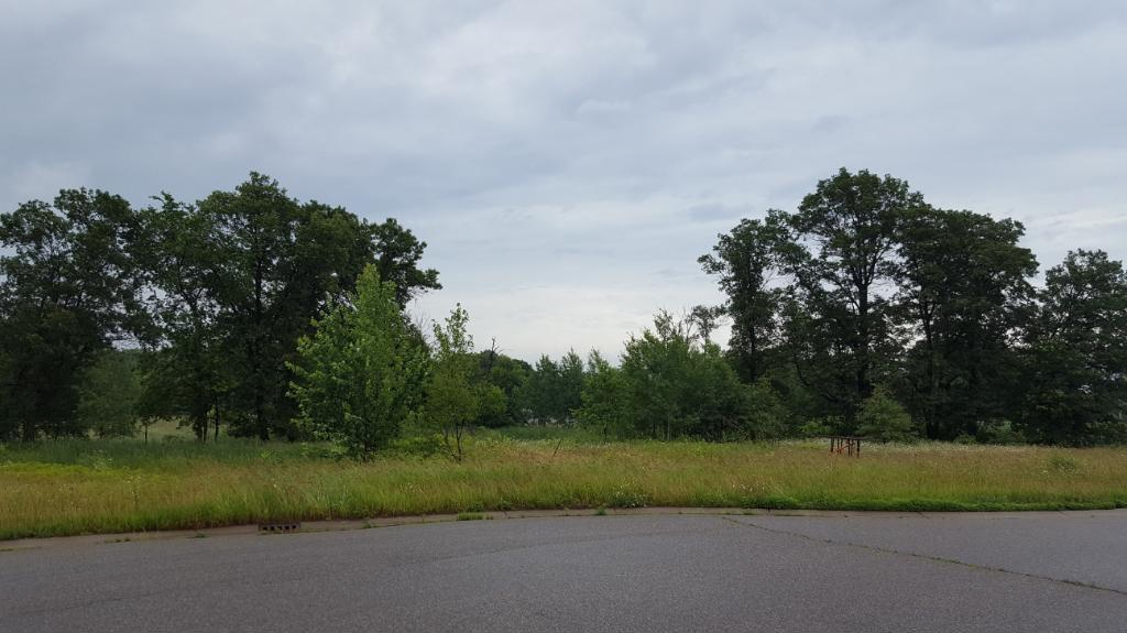 XXX2 161st Ave Ne, Ham Lake, MN 55304