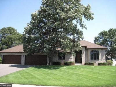 Photo of 13885 NW Ivywood Street, Andover, MN 55304