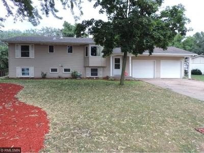 Photo of 8228 S Ideal Avenue, Cottage Grove, MN 55016