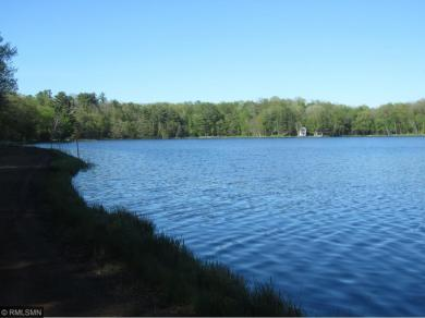 XXX Town Line Lake Road, Deerwood, MN 56444