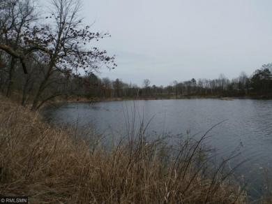 2087 Seven Pines Trail, Knife Lake Twp, MN 55051