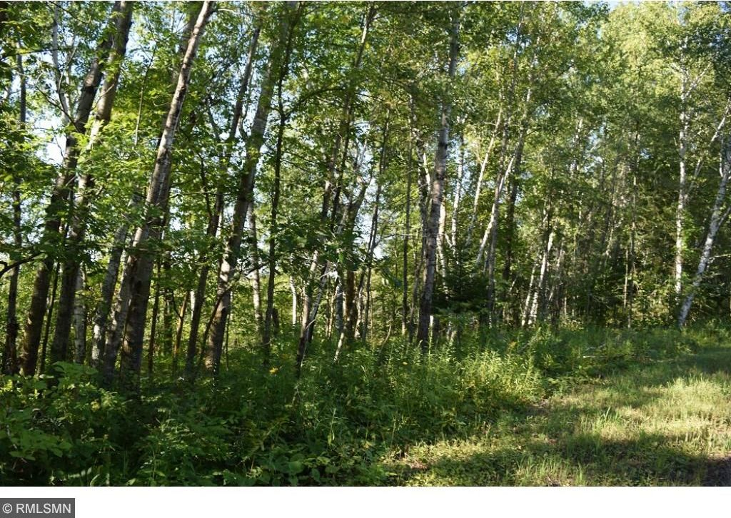 Excellent Mls 4868472 Tbd Tract A Ne Wabedo Pass Road Longville Mn Home Interior And Landscaping Ologienasavecom