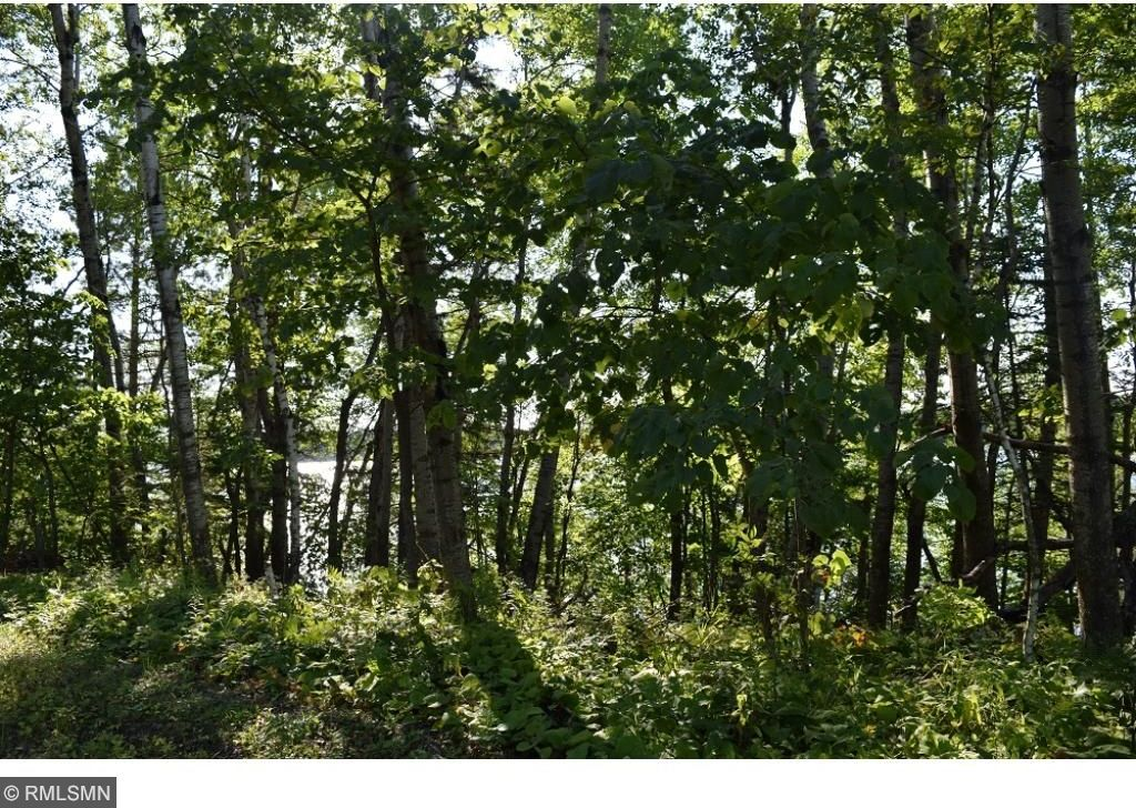 Enjoyable Mls 4868524 Tbd Tract D Ne Wabedo Pass Road Longville Mn Home Interior And Landscaping Ologienasavecom