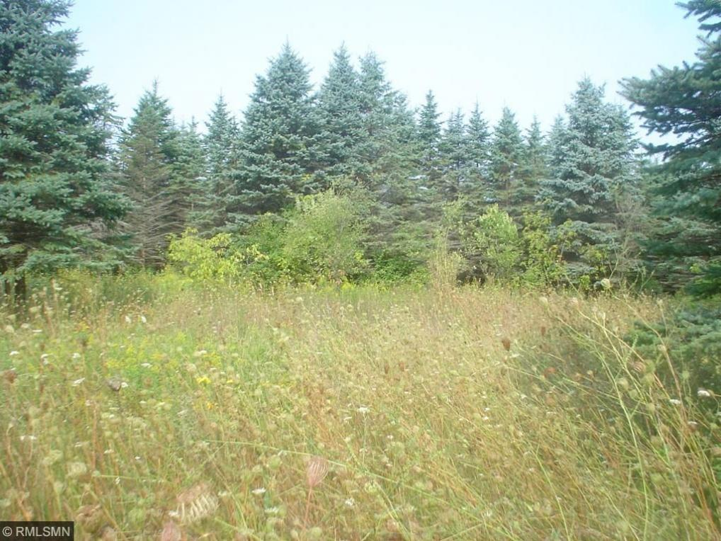 1708 Majestic Pines Trail, Afton, MN 55001