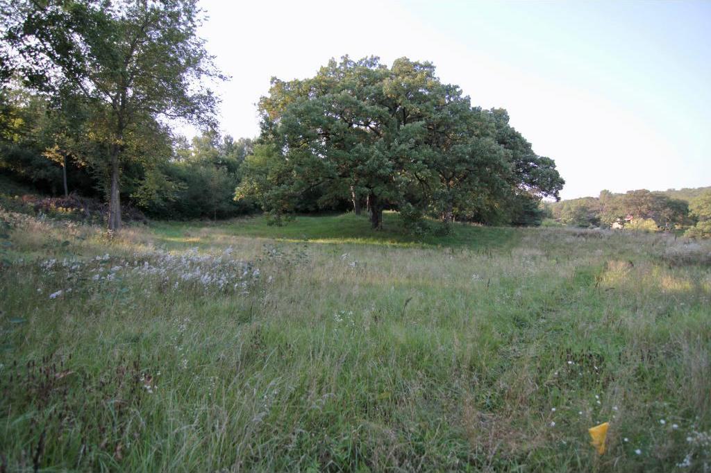 6450 S Preserve Pass, Cottage Grove, MN 55016