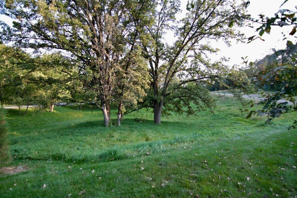 6498 S Preserve Pass, Cottage Grove, MN 55016