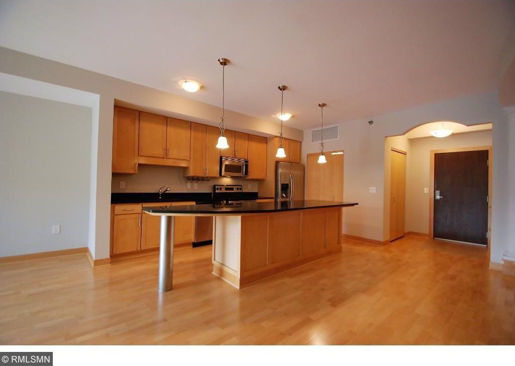 317 Groveland Avenue #204, Minneapolis, MN 55403