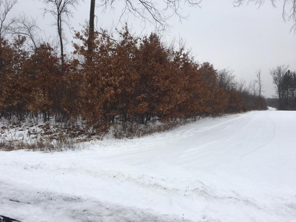 105th Ave 77.4 Acres, Cadott, WI 54727