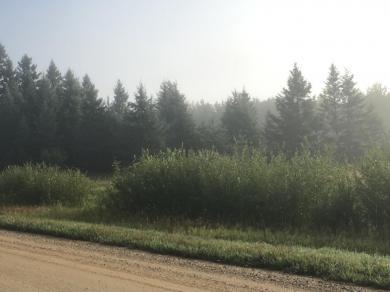 TBD Junction Lanet & Hornet, Blackduck, MN 56630