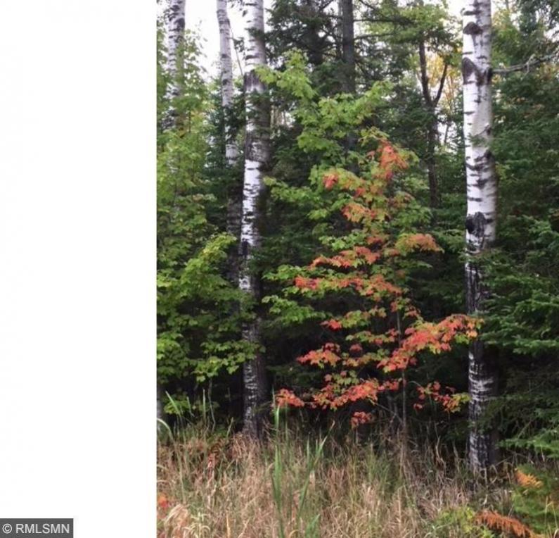 XXX1 S County F, Maple, WI 54854