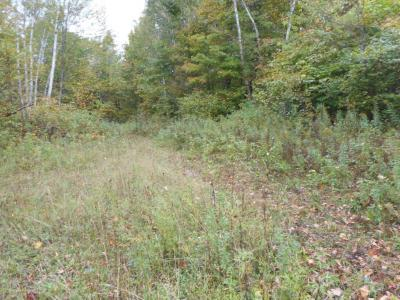 Photo of Lot 2 Ole Lake Road, Cable Twp, WI 54821