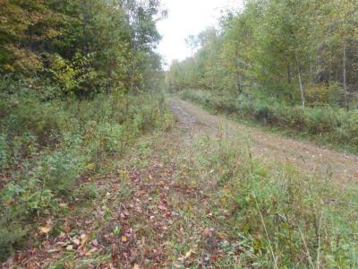 Photo of Lot 1 Ole Lake Road, Cable Twp, WI 54821