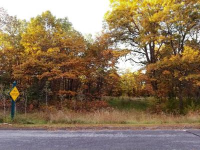 Photo of 140xx NW 270th Avenue, Zimmerman, MN 55398