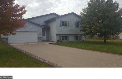 1602 Griffing Park Road, Buffalo, MN 55313
