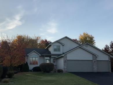 1404 NW 153rd Lane, Andover, MN 55304
