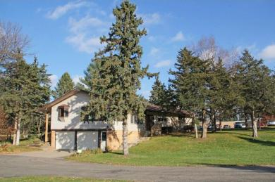 30220 72nd Avenue Way, Cannon Falls, MN 55009
