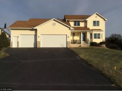 Photo of 1323 NW 146th Lane, Andover, MN 55304