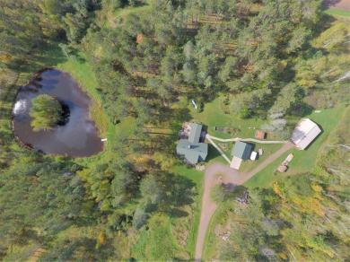 4549 Hagfors Road, Silver Twp, MN 55767