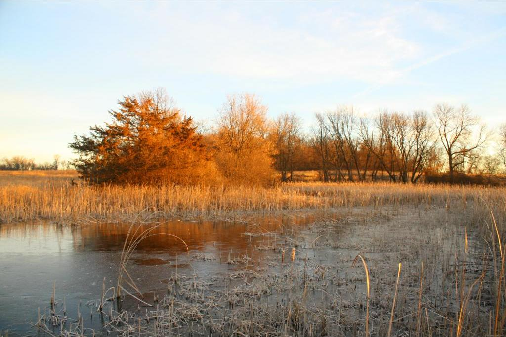 16262 County Road 2, Rich Valley Twp, MN 55336