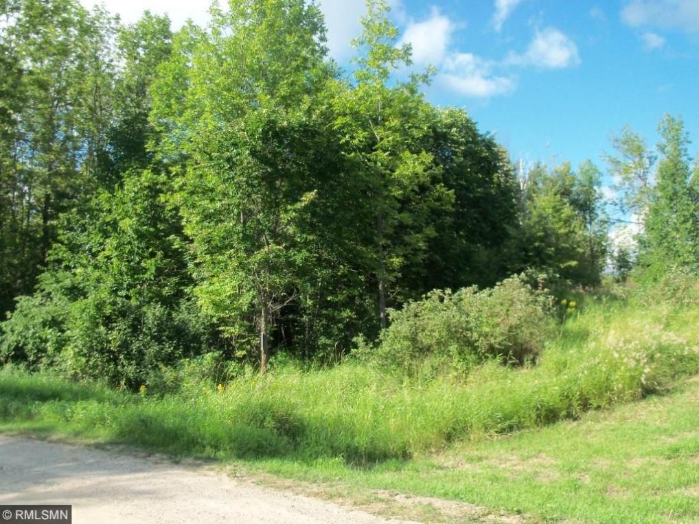 TBD Rearing Pond Rd, Ardenhurst Twp, MN 56661