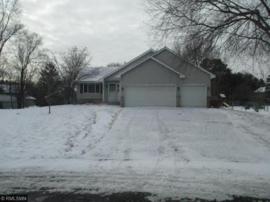 13344 NW Ibis Street, Andover, MN 55304