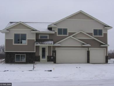 1002 Cole Avenue, Montrose, MN 55363