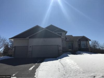 Photo of 946 140th Lane Nw, Andover, MN 55304