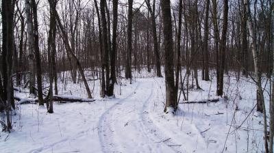 Photo of 160th Avenue, Eagle Point Twp, WI 54724