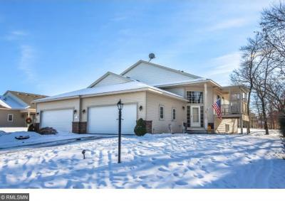 Photo of 22 Pullman Avenue, Saint Paul Park, MN 55071