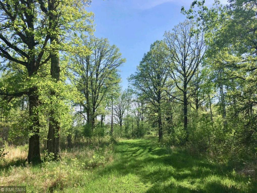 507XX Great River Road, Palisade, MN 56469