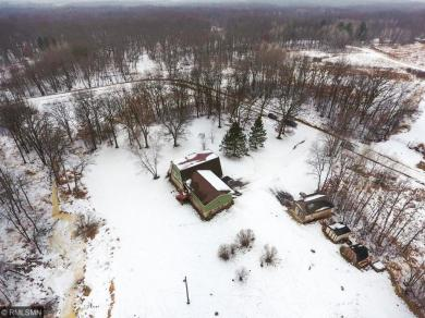 1154 NW 345th Avenue, Springvale Twp, MN 55008