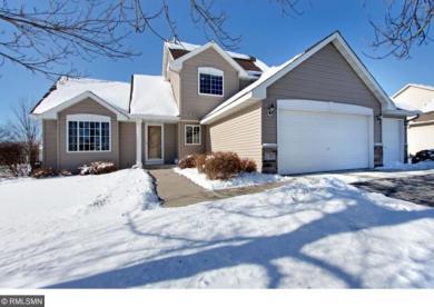 17087 Fairhaven Avenue, Lakeville, MN 55024