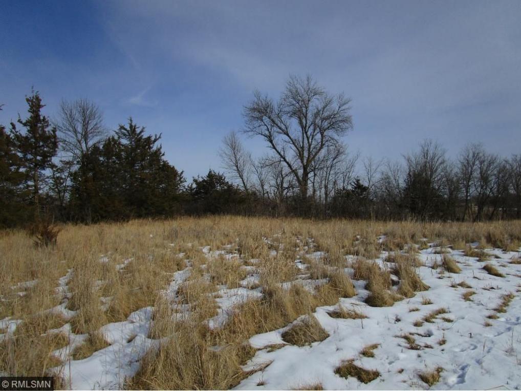 XXX County Rd. 6 Sw, Howard Lake, MN 55349