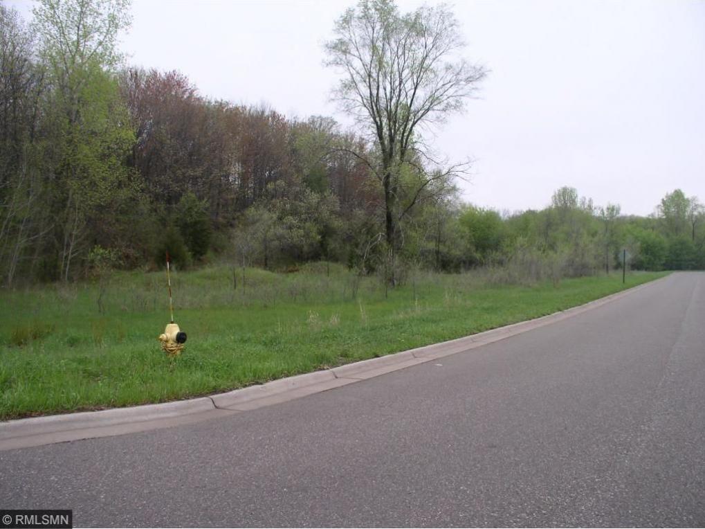 XXXX 125th Lane, Coon Rapids, MN 55448