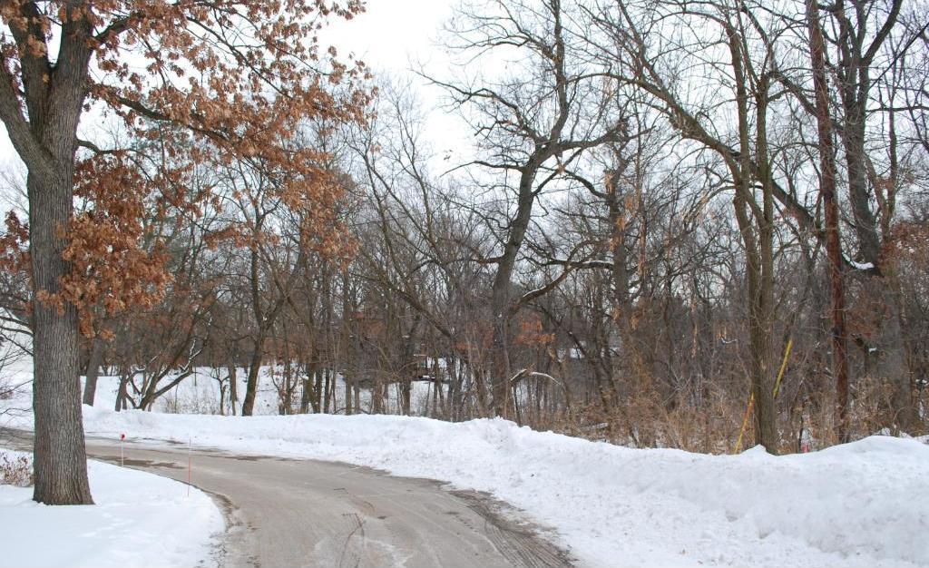 4 Robin Lane, North Oaks, MN 55127