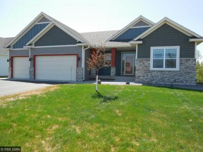 Photo of 334 NW 143rd Avenue, Andover, MN 55304