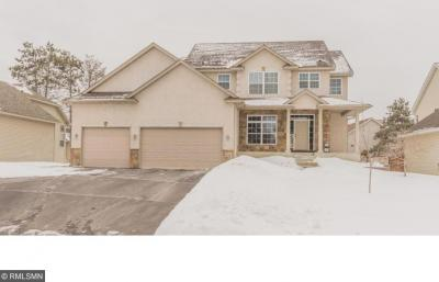 Photo of 1256 NW 130th Lane, Coon Rapids, MN 55448