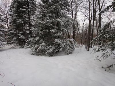 Photo of Lot 3 70th Ave, Chippewa Falls, WI 54729
