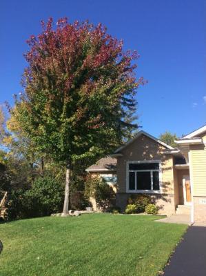 Photo of 540 NW Maple Knoll Way, Saint Michael, MN 55376