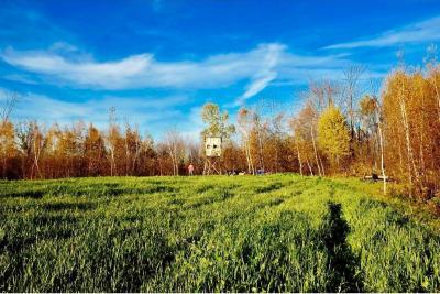Photo of Park Hills 1 Park Hills Rd, Park Twp, MN 55712