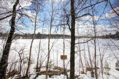Photo of Lot Walter Road, Barnes Twp, WI 54873