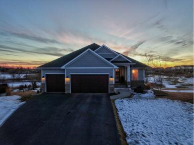 13581 Big Sandy Lake Drive, Rogers, MN 55374