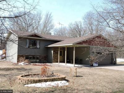 Photo of 8293 SE 116th Street, Clear Lake Twp, MN 55319