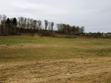 Lot 1 1250th Avenue, Wheeler, WI 54772