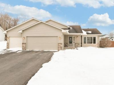 Photo of 9319 S 93rd Street, Cottage Grove, MN 55016