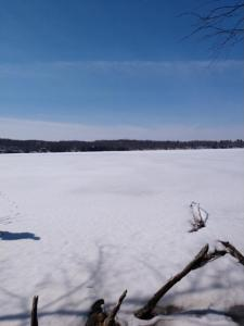 Lot 7 Cleary Road, Birchwood Twp, WI 54876
