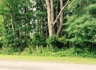 Lot 1 Park Meadow, Jamestown, NY 14701