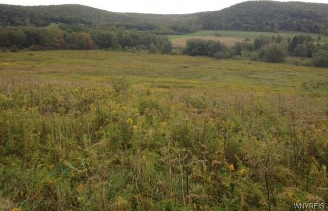 Sugartown Road, Great Valley, NY 14741
