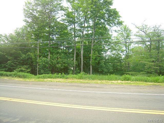 vl Nys Route 16, Allegany, NY 14706